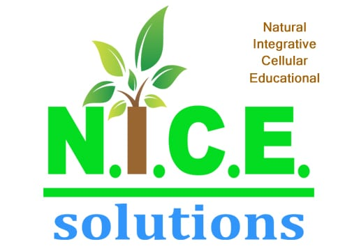 N.I.C.E. Solutions